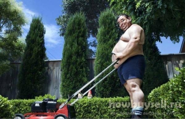 Как выбрать газонокосилку для дачи и дома?