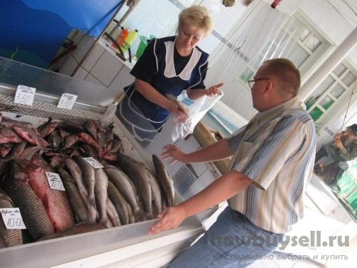 Где лучше покупать рыбу