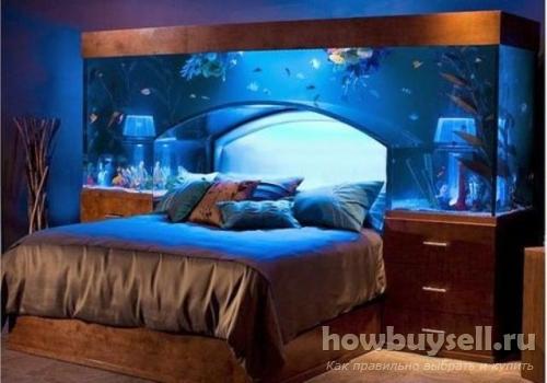 Купить аквариум – отличная идея!