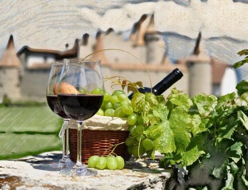 Секреты французского виноделия